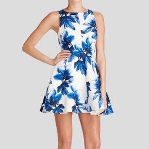 Keepsake Dress